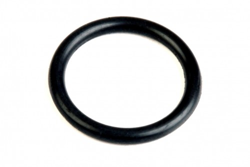 Earls Viton O-Ring