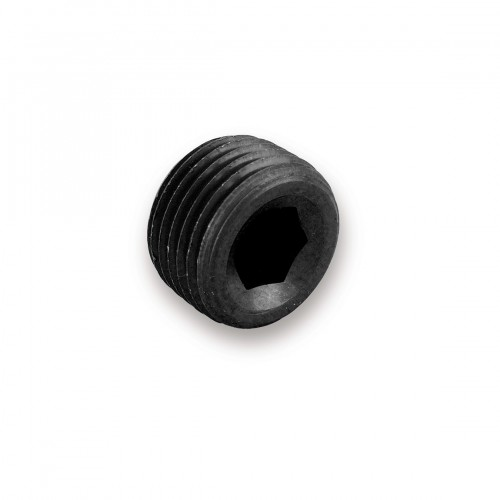 "Earls 1/16"" NPT Internal Plug"